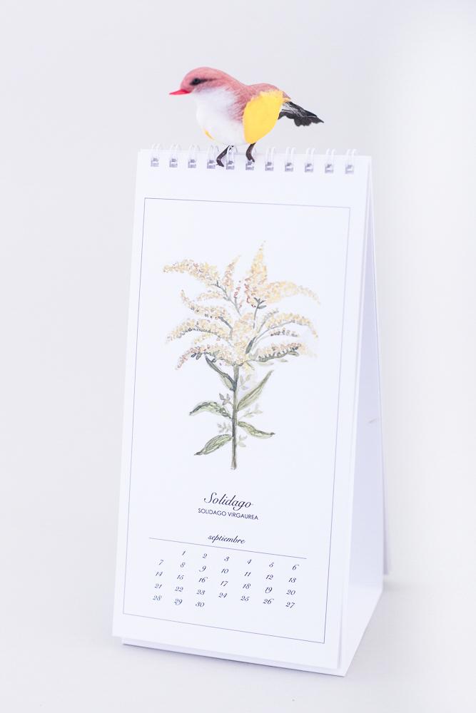 Calendario-6